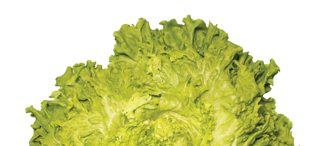 lettuce cooking classes